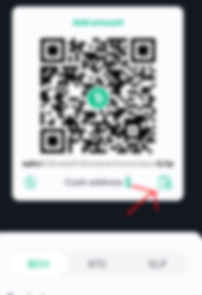 Bitcoin-Cash-Adresse Checker